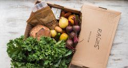 Sustentabilidade: avaliação do consumidor influencia ações de pequenos negócios
