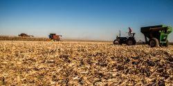 Ipea reduz previsão de PIB agropecuário do Brasil em 2021