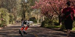 Robô usa inteligência artificial para percorrer trajeto de 5 km